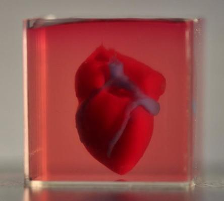 3d-printed-heart